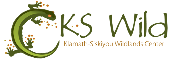 KS Wild Logo